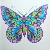 Enternals-Butterflys