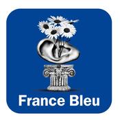 France Bleu Touraine - les Experts du bricolage
